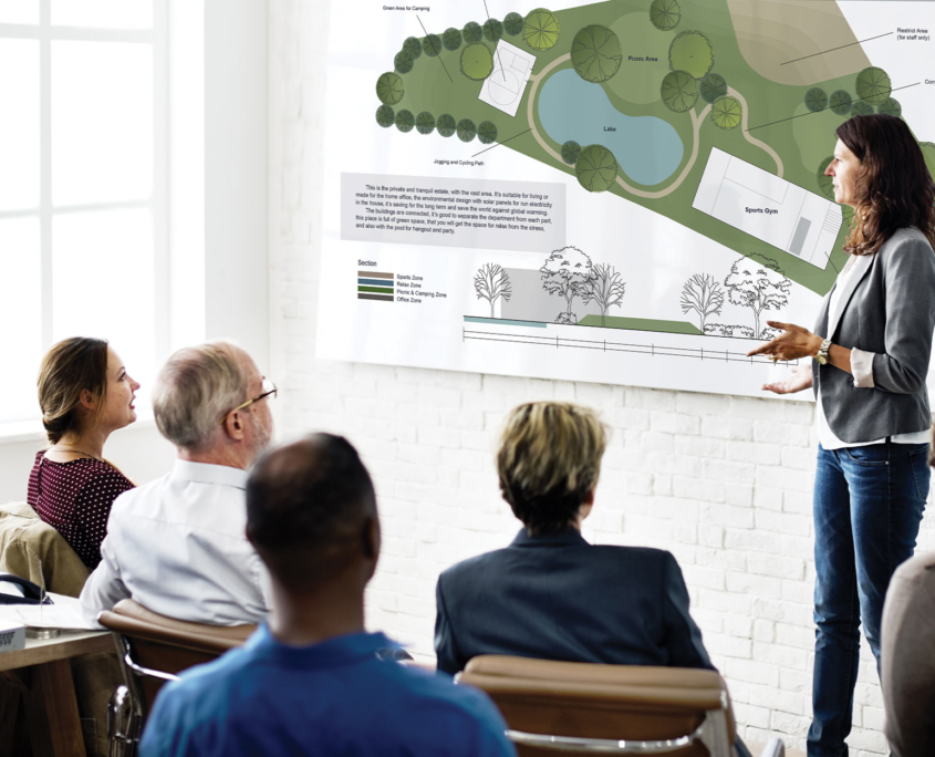 Professional speaking at a planning and zoning meeting